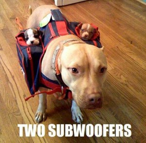 Two Subwoofers